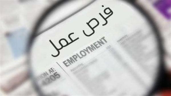 براتب 4600 جنيه.. «القوى العاملة» تعلن عن فرص عمل جديدة