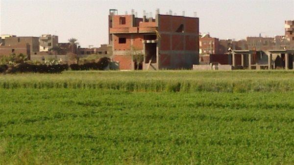 وقف 4 حالات بناء على الأراضي الزراعية بالغربية